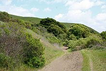 220px-Wildcat_Canyon_Richmond_California