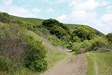 220px-Wildcat_Canyon_Richmond_California